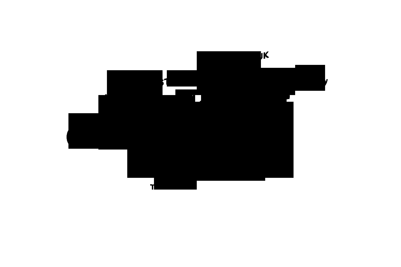 Coke Style Logo